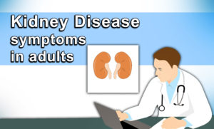 Kidney disease symptoms in adults